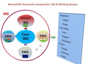 BIC Extended WGs Structure